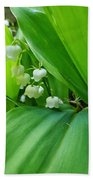 Lily Of The Valley Beach Towel by Jeremy Hayden