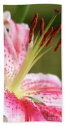 Lily One Beach Towel
