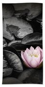 Lily Pad Blossoms Beach Towel