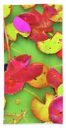 Lily Pad Faces Beach Towel