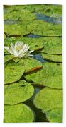 Lily Pad Flowers Beach Towel