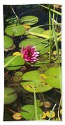 Lily Pad Pond In High Noon Sun Beach Towel