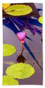 Lily Pads 2 Beach Towel