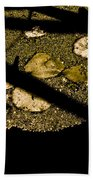 Lily Pads And Shadows Beach Towel