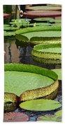 The Lily Pond Beach Towel