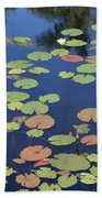 Lily Pads On Blue Pond Beach Towel