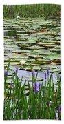 Lily Pond Panorama Beach Towel
