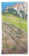 Lime Creek Canyon Beach Towel