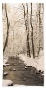 Limentra In Winter Beach Towel