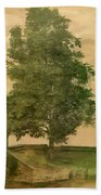 Linden Tree On A Bastion 1494 Beach Towel