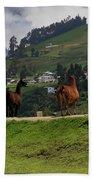 Line-dancing Llamas At Ingapirca Beach Sheet