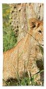 Lion Cub 2 Beach Towel