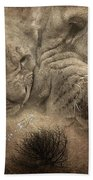 Lion Love Big And Small Beach Towel