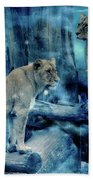 Lions Of The Mist Beach Towel