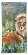 Lions Resting Beach Towel
