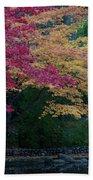Litha Park Ashland Oregon Beach Towel