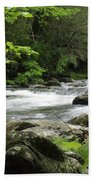 Litltle River 1 Beach Towel by Marty Koch