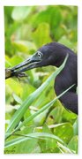 Little Blue Heron Catches A Frog Beach Towel