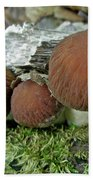 Little Brown Mushrooms In Moss Beach Towel