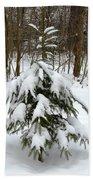 Little Christmas Tree Beach Sheet