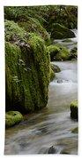 Little Creek 5 Beach Towel