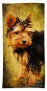 Little Dog II Beach Sheet