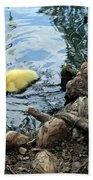 Little Ducky Beach Sheet