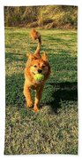 Little Lion Beach Towel