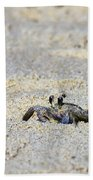 Little Nag's Head Crab Beach Towel