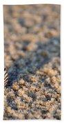 Little Seashell - Jersey Shore Beach Towel