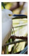 Little Snowy Egret Beach Towel