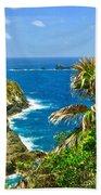 Little Tobago  Beach Towel