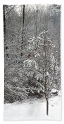 Little Tree Big Snow Beach Towel