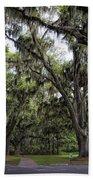 Live Oak And Spanis Moss Landscape Beach Towel