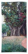 Live Oak Gardens Jefferson Island La Beach Towel