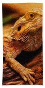Lizard - Id 16217-202744-5164 Beach Towel