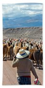 Llama Herd On Road Beach Towel