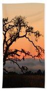 Loan Tree Overlooking Fog Beach Sheet