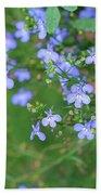 Lobelia Flowers Beach Towel