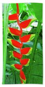 Lobster Claw Heliconia Beach Towel