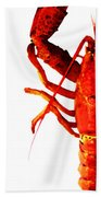 Lobster - The Left Side Beach Towel