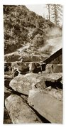 Logging With Oxen At A Saw Mill Sonoma County California Circa 1900 Beach Towel