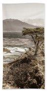 Lone Cypres Beach Towel