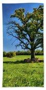 Lone Oak Tree In Wisconsin Field Beach Towel