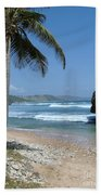 Lone Palm On Barbados Coast Beach Towel