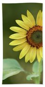 Lone Sunflower Beach Towel