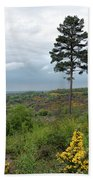 Lone Tree At Devils Punch Bowl Beach Towel
