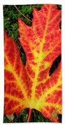 Lonely Leaf ... Beach Towel