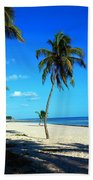 Lonely Palm Beach Towel