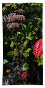 Lonely Red Leaf Beach Towel